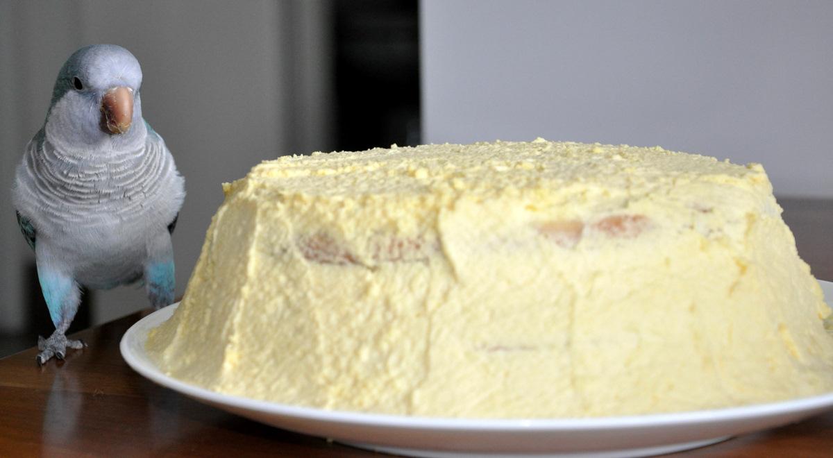 Birthday Cake Lemon Mascarpone Sponge Bistro Gerard